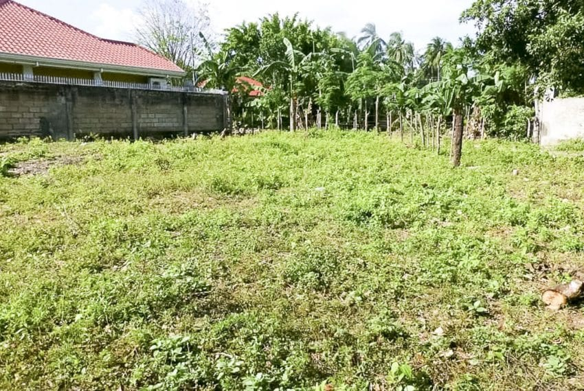 SLL19 567 SqM Beachfront Lot for Sale in Compostela Cebu - Cebu