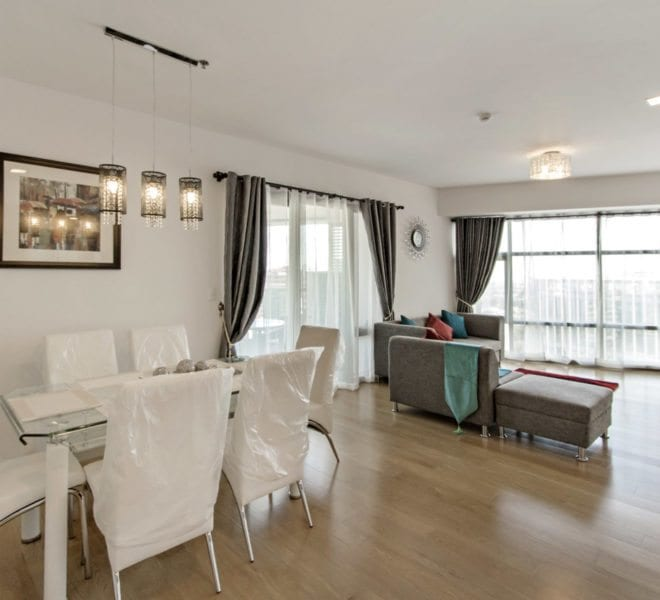 brand new 2 bedroom condo for rent in park point residences