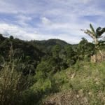 Lot for Sale in Maria Luisa