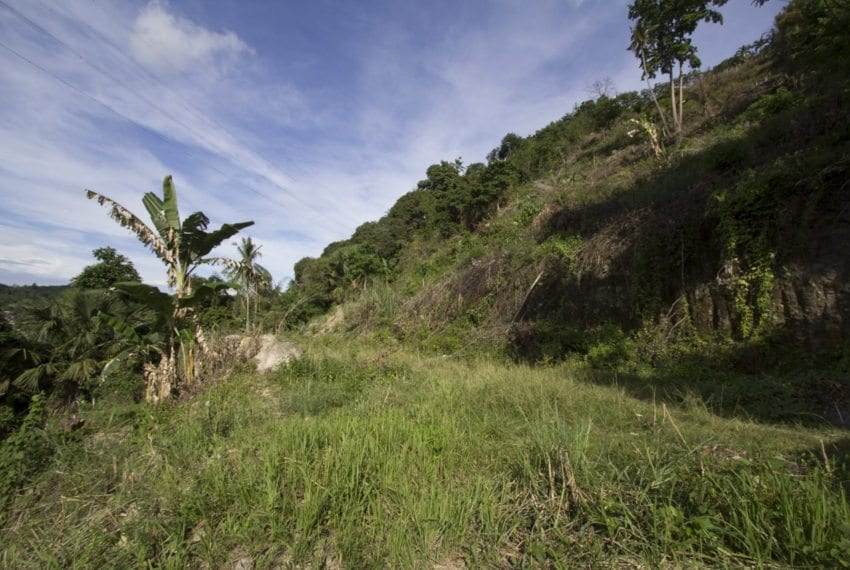 SLL21 11000 SqM Lot for Sale in Maria Luisa Park Cebu Grand Real