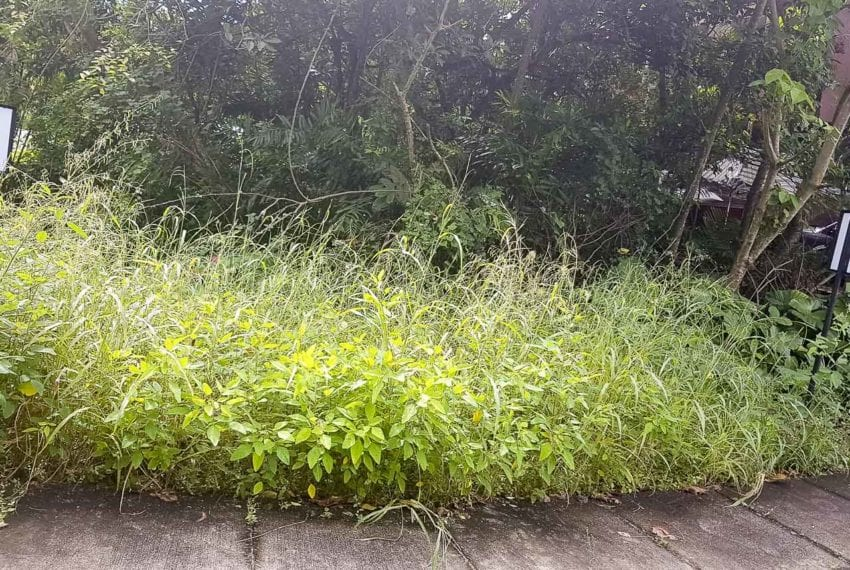 SLL23 381 SqM Lot for Sale in Maria Luisa Park Cebu Grand Realty