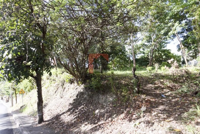 1800 SqM Elevated Lot for Sale in Maria Luisa Park (1)