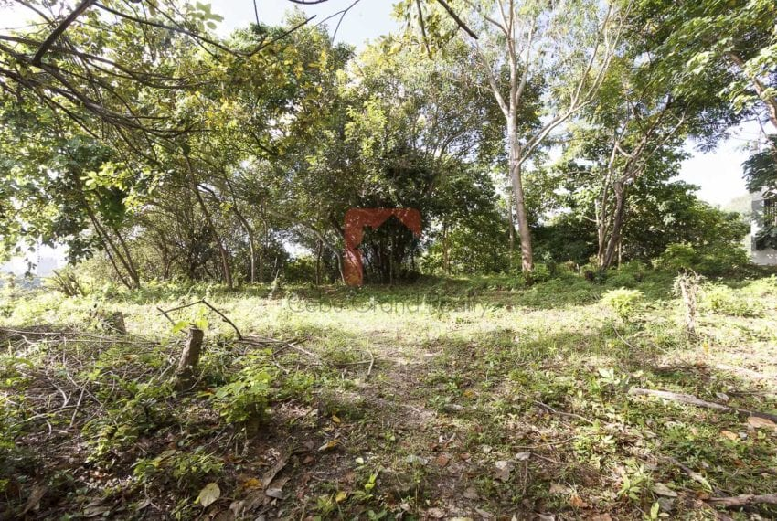 1800 SqM Elevated Lot for Sale in Maria Luisa Park (3)