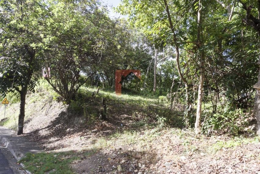 1800 SqM Elevated Lot for Sale in Maria Luisa Park (4)